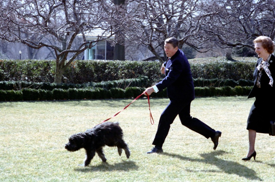 Reagan, born a south paw, was trained to write with his right hand, but favors his left.